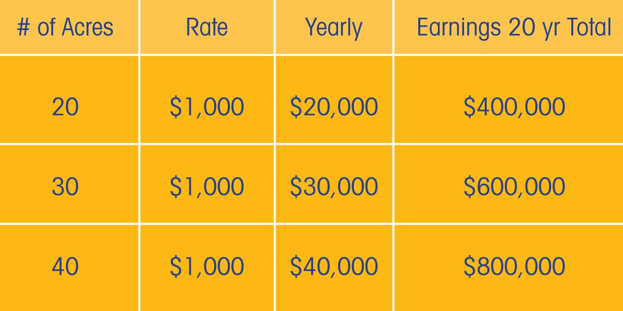 long-term revenue solar farm